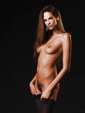 Hilary swank hairy porn pictures apologise