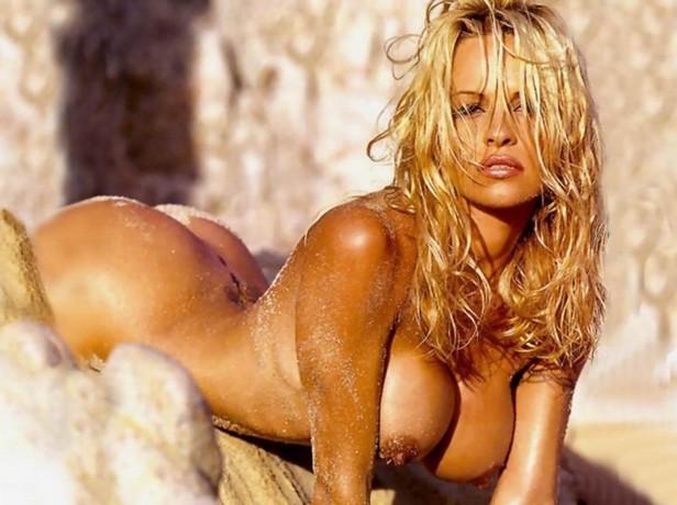 from Royal pamela anderson big tits naked