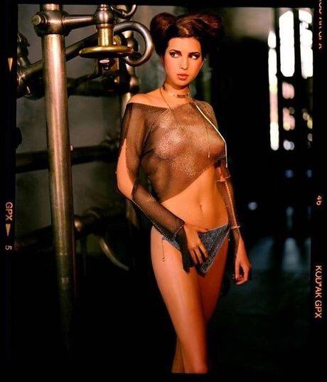 Above told Ivana trump nude pics someone alphabetic